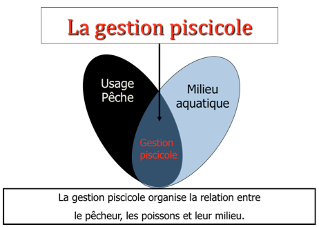definition gestion piscicole